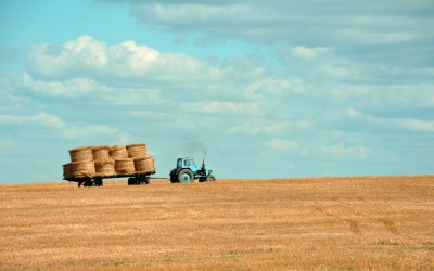 Harvest Your Audience: Take the Next Steps for Lasting Content Marketing Growth