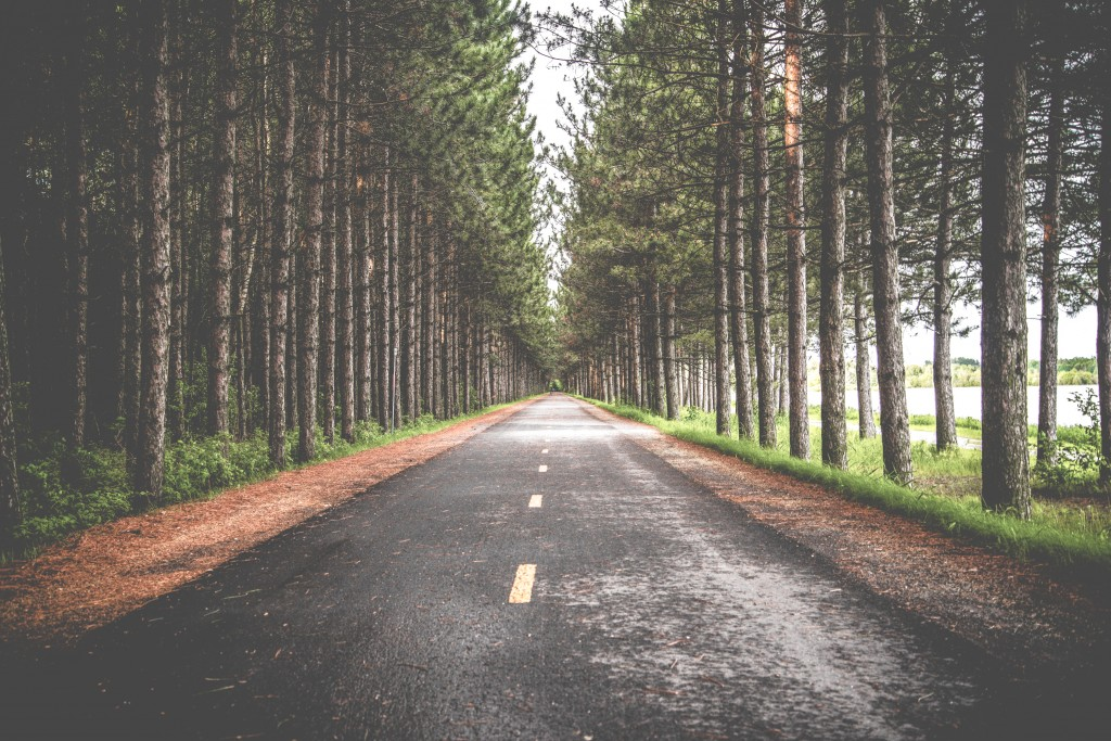Take the social media road platform less traveled